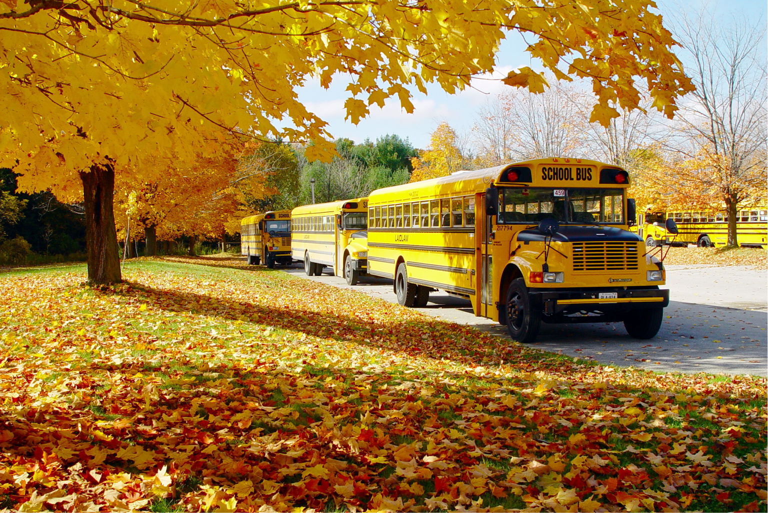 Winterization Musts for Western Canada School Buses
